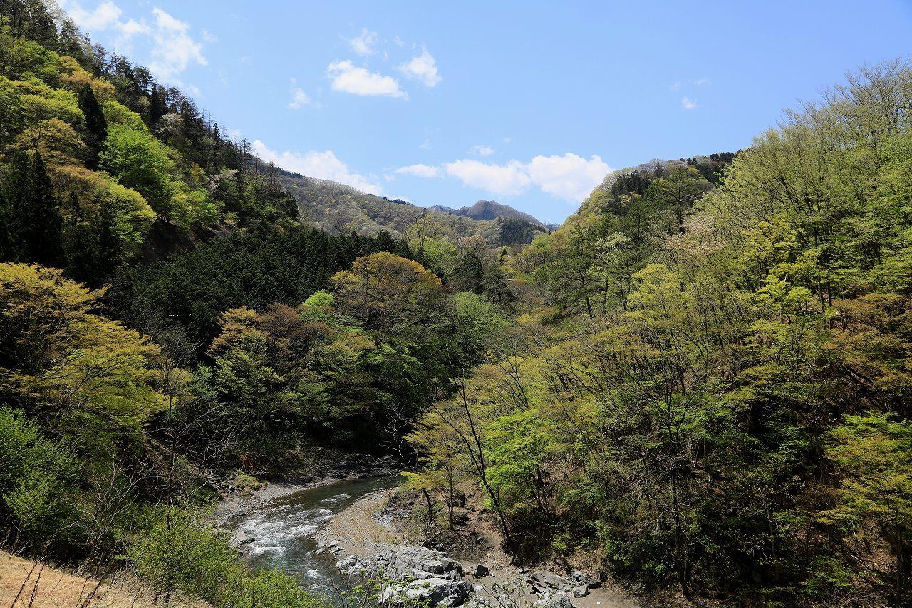 G県のお山にて_f0296999_13350922.jpg
