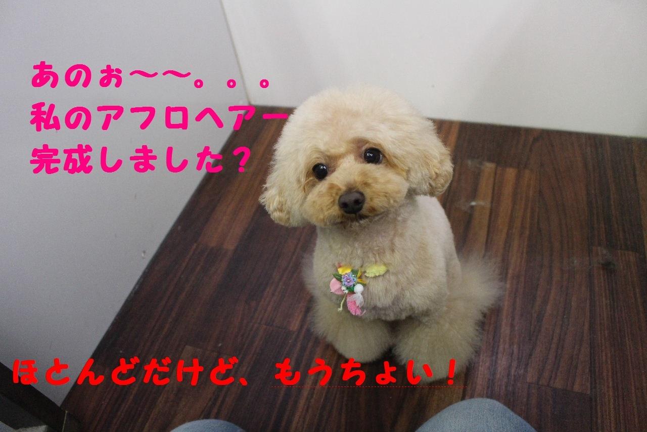 今日の朝定~!_b0130018_07252170.jpg