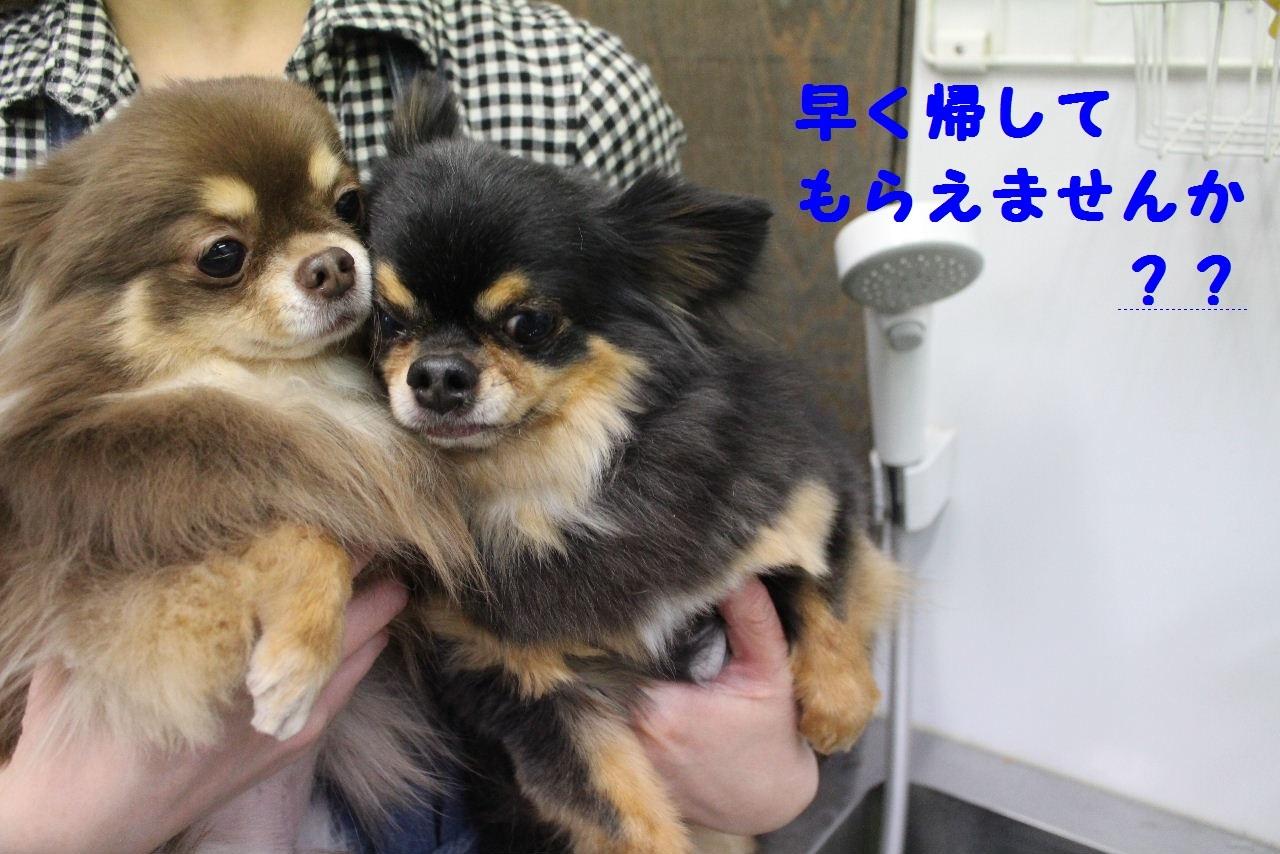 今日の朝定~!_b0130018_07343975.jpg