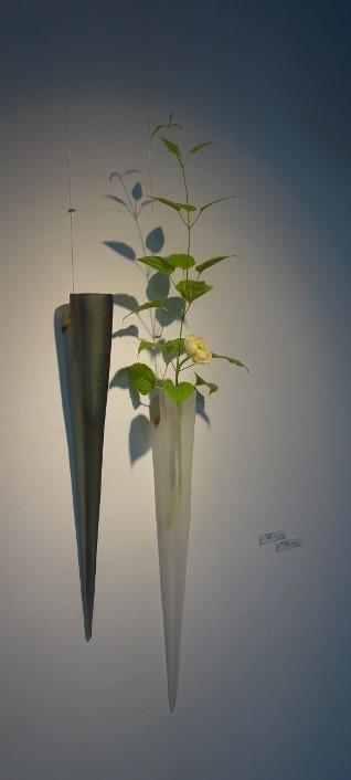 初夏の爽やかな陽射しに植物がとてもすてきに映える一日♫_b0232919_18484110.jpg