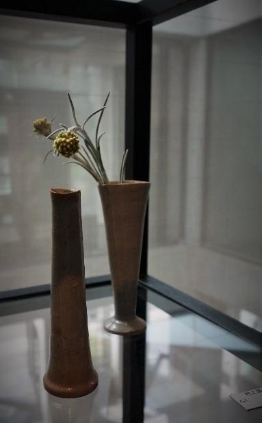 初夏の爽やかな陽射しに植物がとてもすてきに映える一日♫_b0232919_18591170.jpg