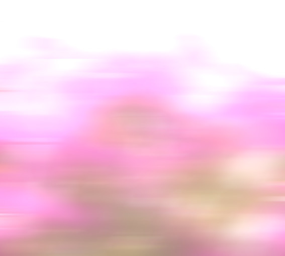 a0329820_16572035.jpg