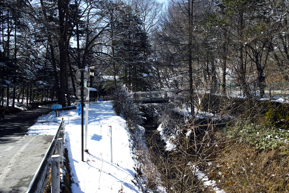 4月2日雪の軽井沢①_c0223825_08445357.jpg