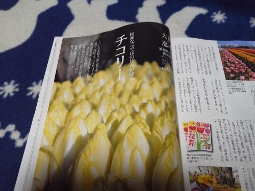 家の光を読む!!!_f0325525_22484886.jpg