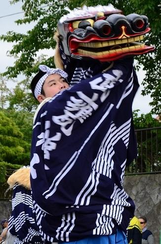 おしらせ 2017軽米町のチューリップ園_c0299631_20233685.jpg