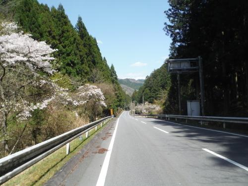 伊勢本街道サイクリング_b0332867_21591184.jpg