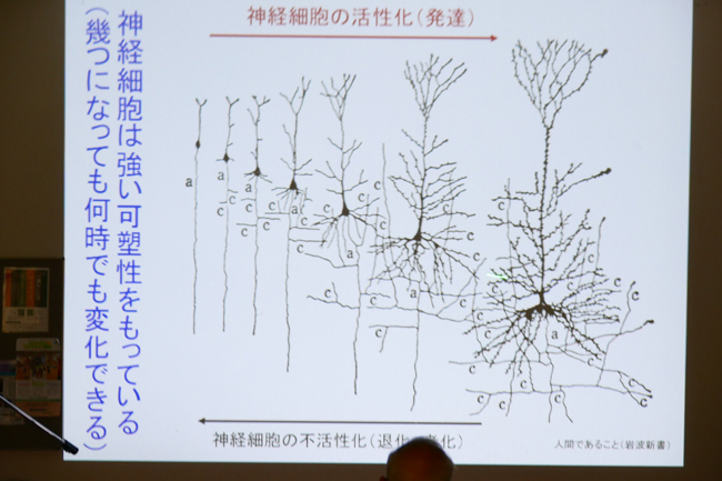 [報告]脳の働きを活発にして認知症を予防しよう_d0160105_15515196.jpg