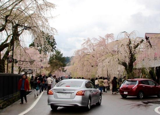 東北桜旅 〜秋田篇〜_f0197215_09480628.jpg