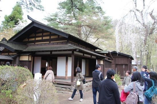 東北桜旅 〜秋田篇〜_f0197215_09562791.jpg