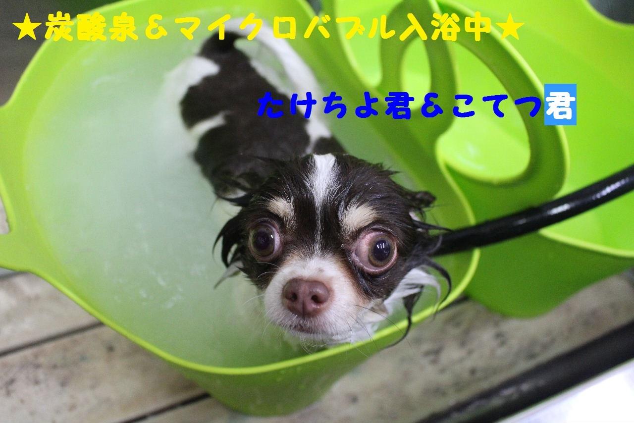 今日の朝定~!_b0130018_07264347.jpg