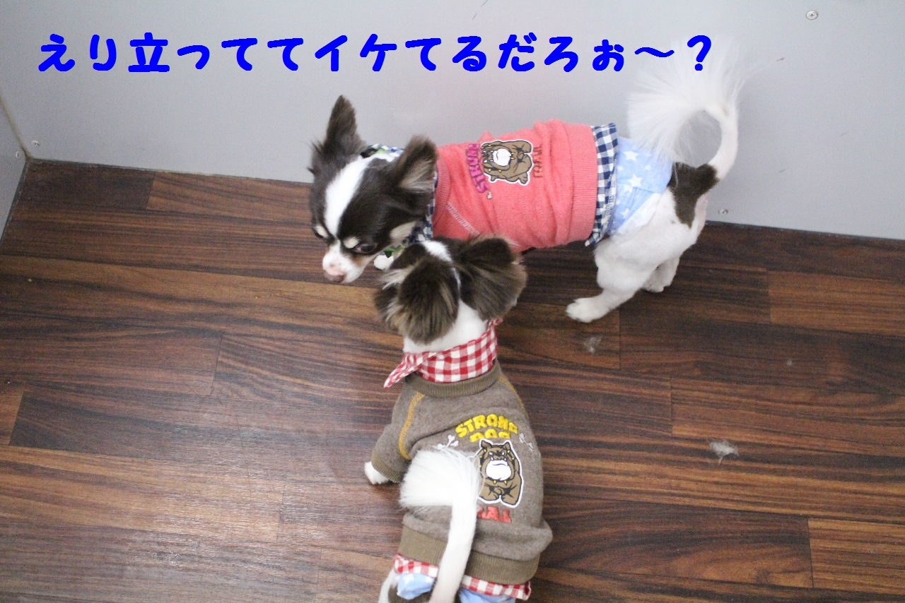 今日の朝定~!_b0130018_07303567.jpg