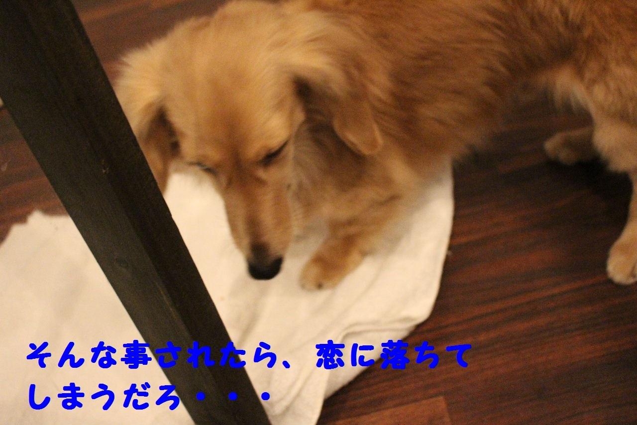 今日の朝定~!_b0130018_07334698.jpg