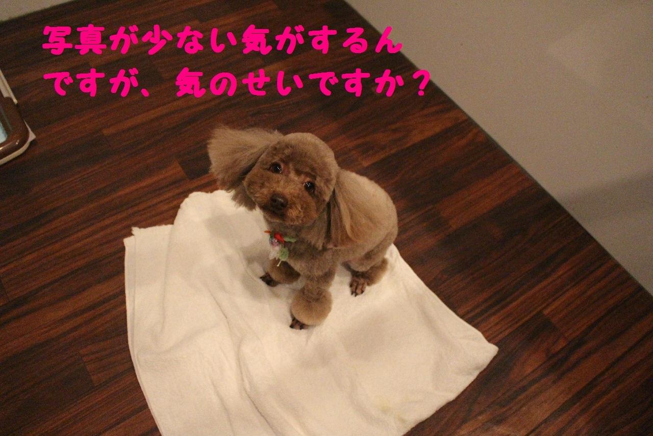 今日の朝定~!_b0130018_07355481.jpg