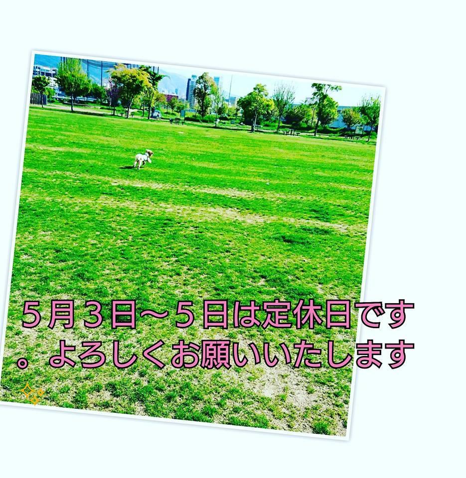 d0070759_16034627.jpg