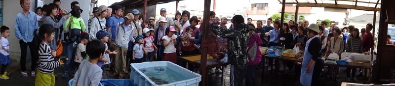 ZooCan「親子で磯あそび&岬町のお魚づくしと海鮮バーベキュー」・・・みさき里山クラブ支援_c0108460_00182080.jpg
