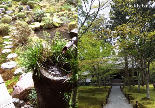 Kyoto trip  春の京都旅 洛北_e0253364_20511649.jpg