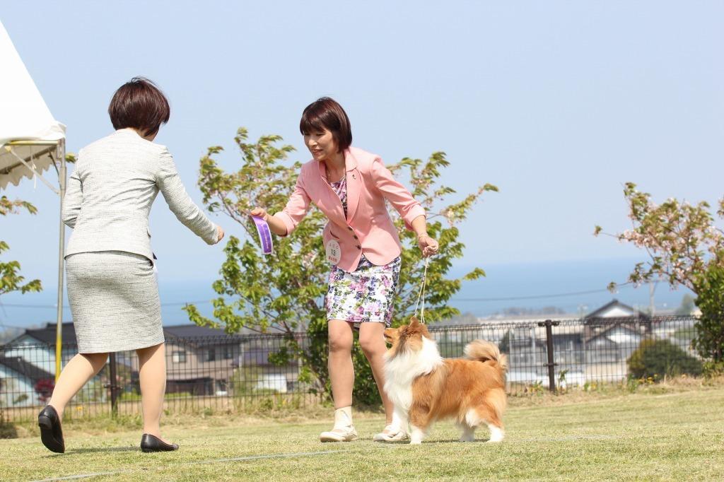 4.30 JCC 富山55周年記念展&JCC 石川展_a0139367_23025348.jpg