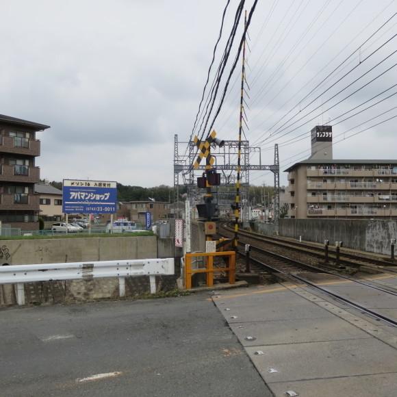 秋篠川を上るおっさん。_c0001670_19262168.jpg