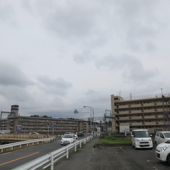 秋篠川を上るおっさん。_c0001670_19262899.jpg