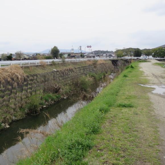 秋篠川を上るおっさん。_c0001670_19264155.jpg