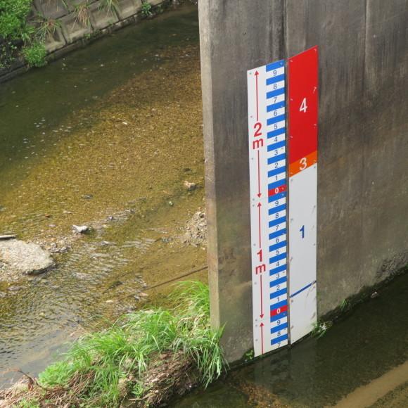 秋篠川を上るおっさん。_c0001670_19273019.jpg