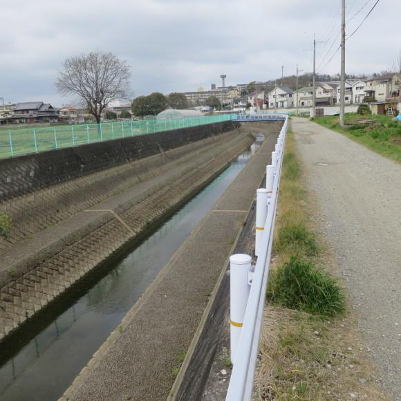 秋篠川を上るおっさん。_c0001670_19275922.jpg