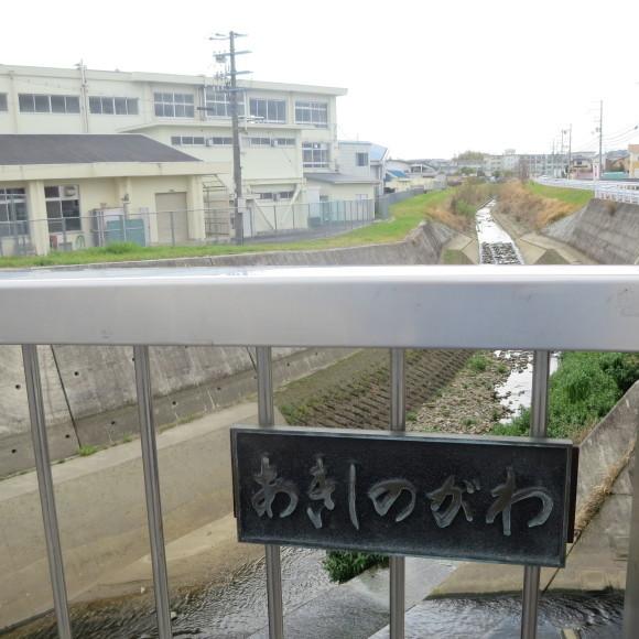 秋篠川を上るおっさん。_c0001670_19280583.jpg