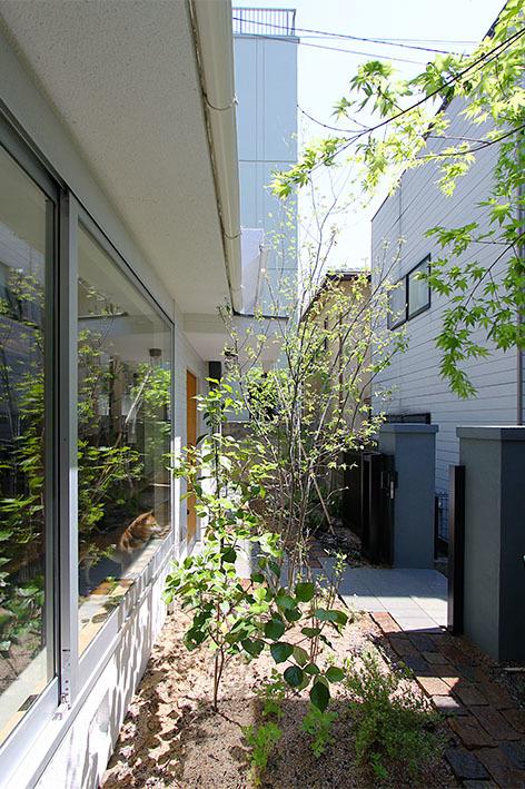 神戸市灘区の住宅リノベーションが無事竣工しました_a0212380_11184560.jpg