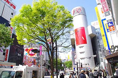 5月2日(火)今日の渋谷109前交差点_b0056983_14225954.jpg