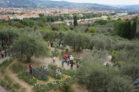 開催中!フィレンツェのアイリス庭園はこれからが見頃です_f0106597_06211024.jpg