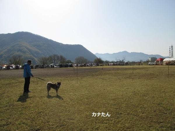 f0143123_20090520.jpg