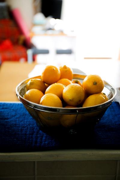 塩レモン レシピ色々  _d0034447_20284934.jpg