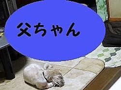 d0140668_10425913.jpg