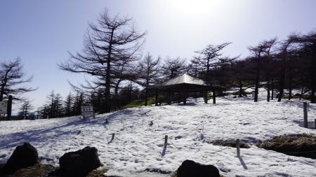 湯ノ丸高峰林道が開通しました_e0120896_07462548.jpg