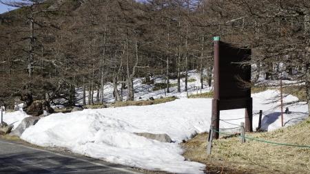 湯ノ丸高峰林道が開通しました_e0120896_07480608.jpg