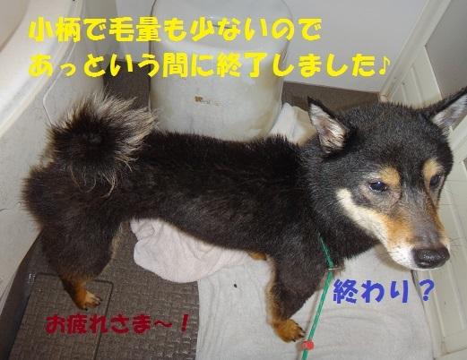 f0121712_01073579.jpg