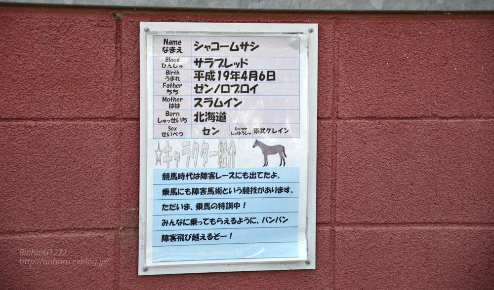 2016.3.20  東武クレイン☆シャコームサシ【Thoroughbred】_f0250322_23514715.jpg