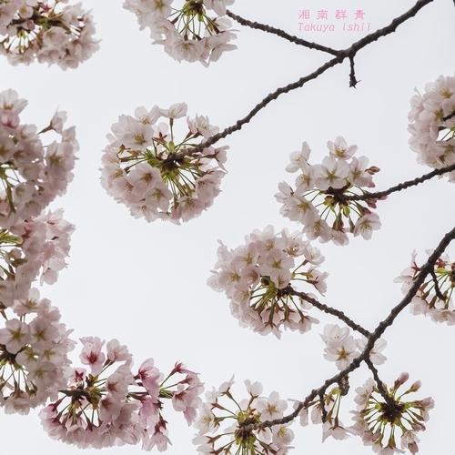 b0281035_01473459.jpg