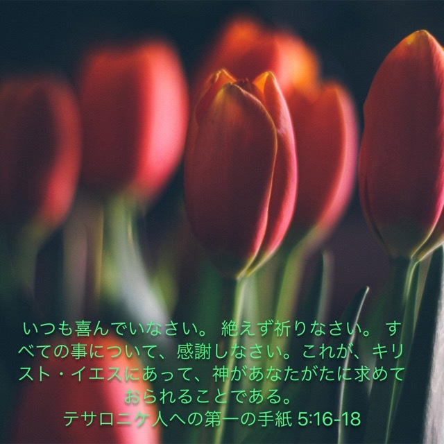 d0100239_08121808.jpg