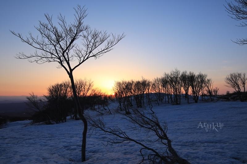 夜明けとともに_b0331895_13052490.jpg