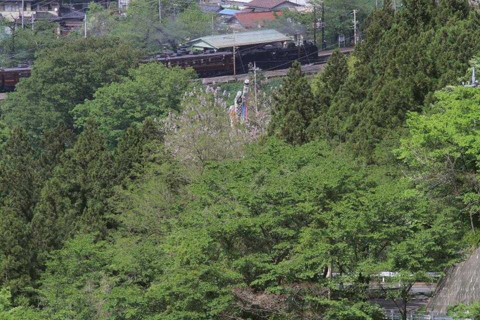 鯉のぼりと蒸気機関車 - 2017年春・秩父 -_b0190710_20360556.jpg