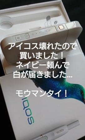 f0238814_17095101.jpg