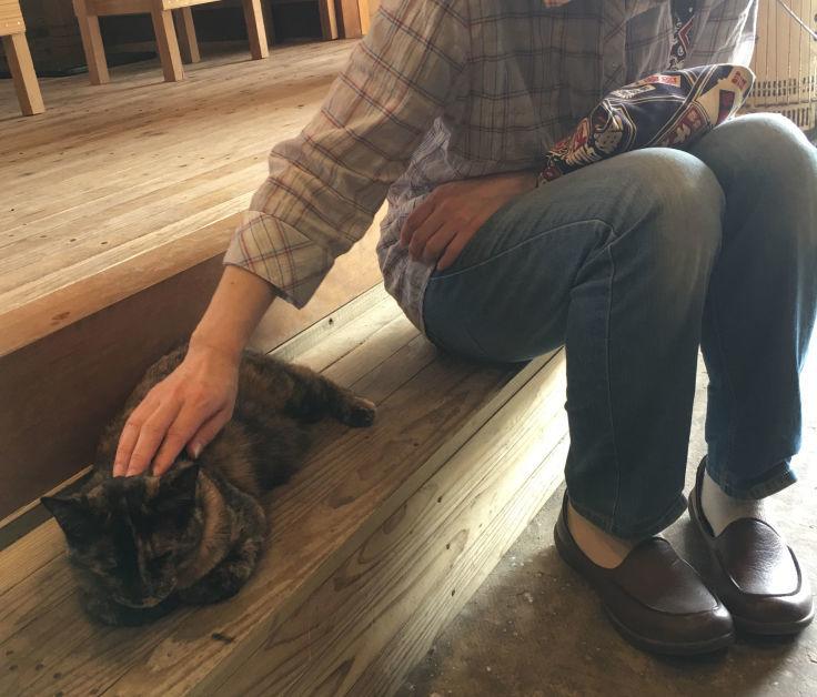 あなたがいつか話してくれた猫たちを僕らは訪ねて来た_b0060239_20024221.jpg