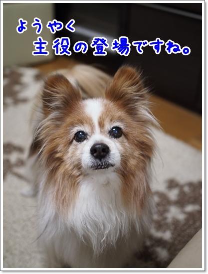 d0013149_00510668.jpg