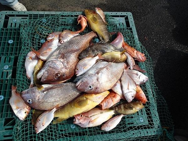 いまりマリーナの春の釣り大会♪_a0077071_13052504.jpg