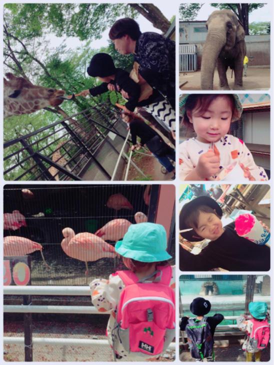 動物園やら陶器市やら本日のミヤラジやら_a0127284_04424741.jpg