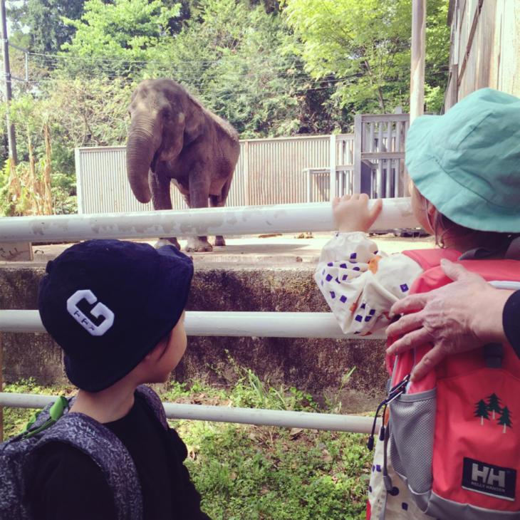 動物園やら陶器市やら本日のミヤラジやら_a0127284_04424755.jpg