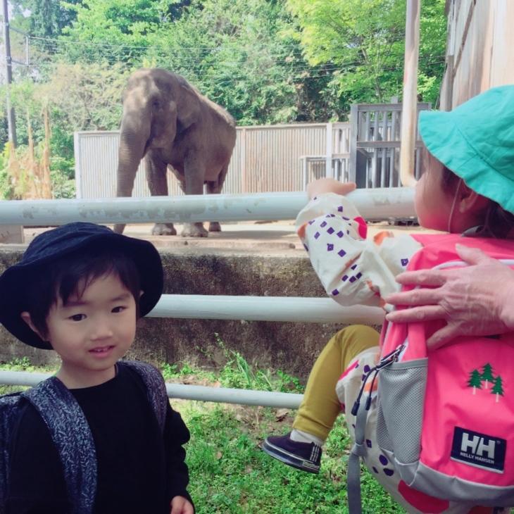 動物園やら陶器市やら本日のミヤラジやら_a0127284_04453148.jpg