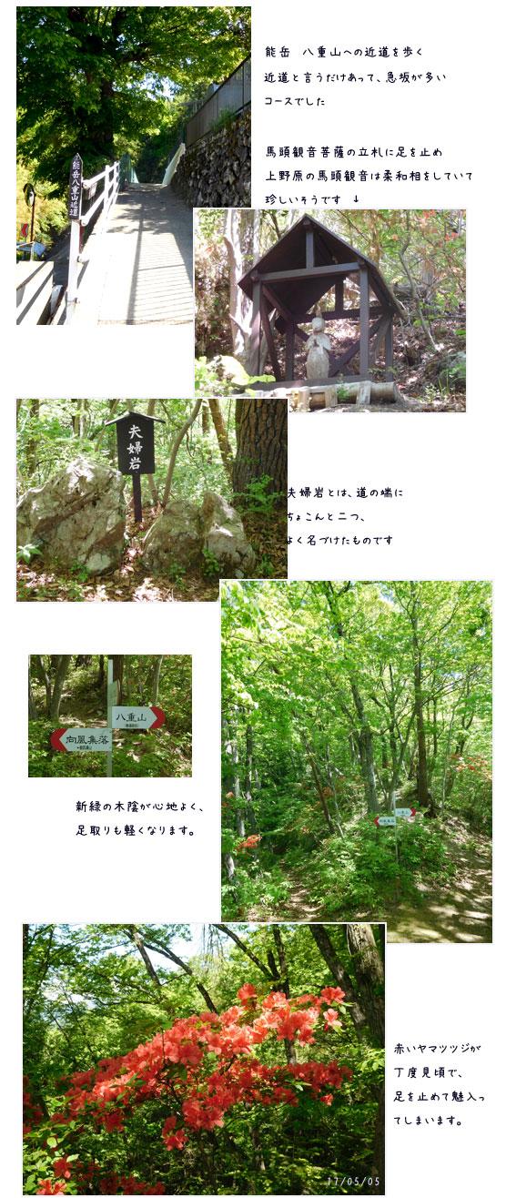 能山から八重山をハイキング_c0051105_16352259.jpg