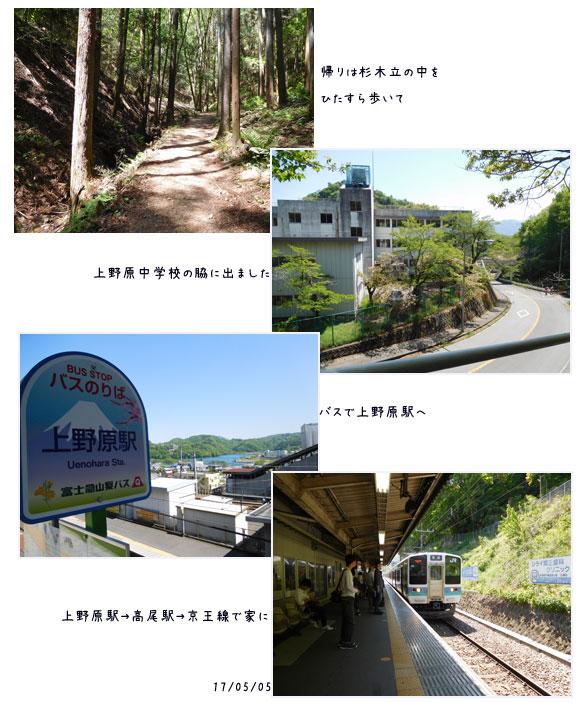 能山から八重山をハイキング_c0051105_1847550.jpg